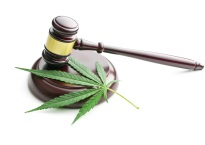 Cannabis leaf underneath a gavel